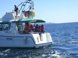 en route vers la pêche